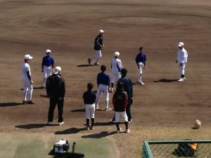 野球教室の基礎体力強化